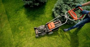 Professional Weeding and Gardening Service